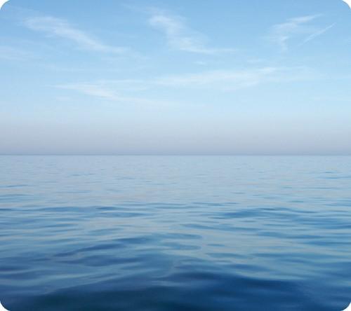 Muismat Fellowes natuur collectie blauwe oceaan