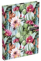 Schoolagenda 2018/2019 Cactus small NL