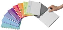 Schrift Adoc pap-ex color A5 ruit 5mm 144blz assorti