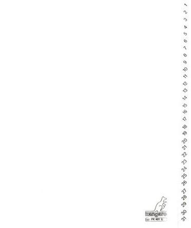 Tabbladen Kangaro 4-gaats PK431C 1-31 genummerd wit karton 1 SET